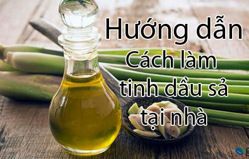 Hướng dẫn cách làm tinh dầu xả tại nhà đơn giản và tiết kiệm