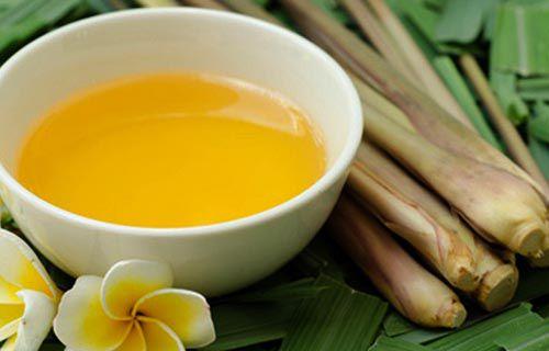 Những tác dụng của tinh dầu sả với sức khỏe và làm đẹp