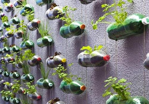 Cách trồng rau bằng chai nhựa từng tầng