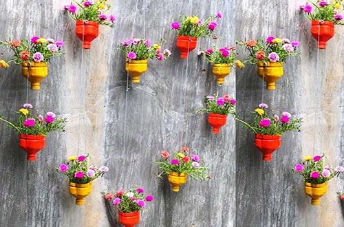 Trồng hoa bằng chai nhựa treo tường